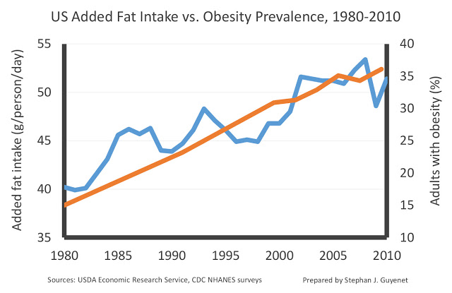 Added fat vs. obesity